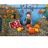 Thanksgiving, Autumn Decoration