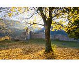 Herbst, Burgruine Karlstein