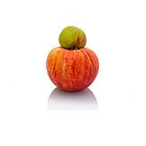 Apple, Squash