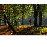 Park, Herbst, Spaziergang