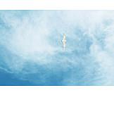 Sky, Seagull
