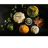 Autumn, Autumn Decoration