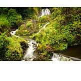 Waterfall, Maui