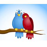 Vogel, Verliebt, Pärchen