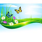 Butterfly, Flower Meadow, Spring