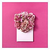 Flowers, Valentine, Love Letter
