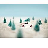 Winter Landscape, Christmas Tree