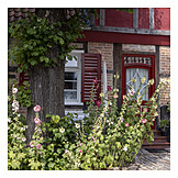 House, Timbered, Hollyhock