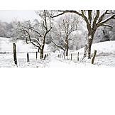 Winter, Winter Landscape, Dirt