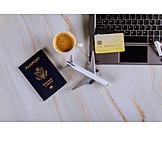 Online, Beech Tree, Flight