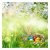 Easter, Easter Nest, Easter Time