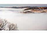 Autumn, Fog, Scotland