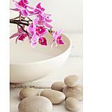 Wellness, Spa, Zen
