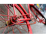 Bicycle, Bicycle Chain, Back Wheel
