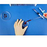 Examination, Laboratory, Blood Sample