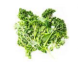 Parsley, Culinary herbs