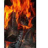 Fire, Burning, Log