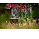 Garten, Ländlich, Schuppen, Pumpe, Wasserpumpe, Holzschuppen