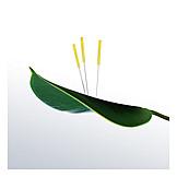 Acupuncture, Acupuncture Needle