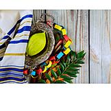 Religion, Judaism