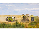 Agriculture, Combine, Grain Harvest