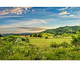 Meadow, Rural Scene, Montenegro