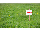 Meadow, For Sale