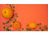 Autumn, Squash, Thanksgiving