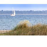 Beach, Sea, Marram Grass