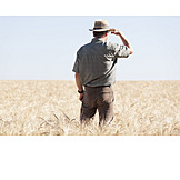 Agriculture, Wheat Field, Farmer