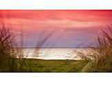 Sea, Coast, Sunrise