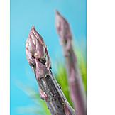Asparagus, Asparagus Tip