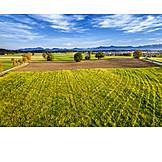 Acker, Landwirtschaft, Felder