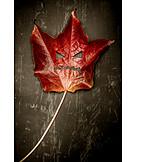 Grimace, Halloween, Leaf