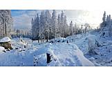 Winter, Snow, Teutoburg Forest