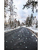 Forest, Road, Snowing