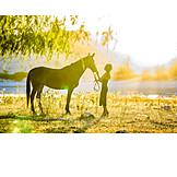 Summer, Horse, Excursion