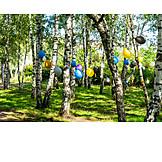 Trees, Balloons