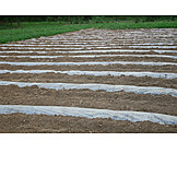 Landwirtschaft, Folie, Mutterboden