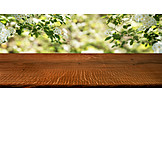 Spring, Wooden Table