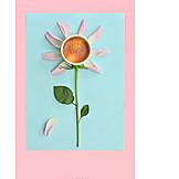 Flower, Coffee