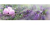 Meadow, Easter Nest