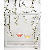Wine, Frame, Wine Glass, Tree Blossom