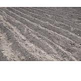 Farmland, Jointing, Topsoil
