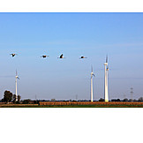 Power supply, Crane, Pinwheel