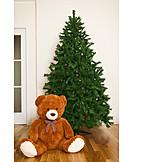 Christmas Tree, Teddy Bear, Fir Tree, Undecorated