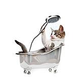 Cat, Bathtub