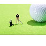 Golf Course, Golf Ball, Tee Box, Golf