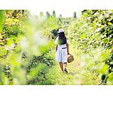 Teenager, Summer, Basket, Harvest