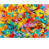 Multi Colored, Springs, Carnival